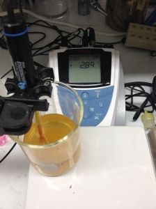 pH meter with the Blended Sour