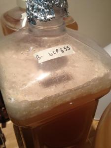 Sour Mix I from White Labs (2.5 Gallon Carboy)