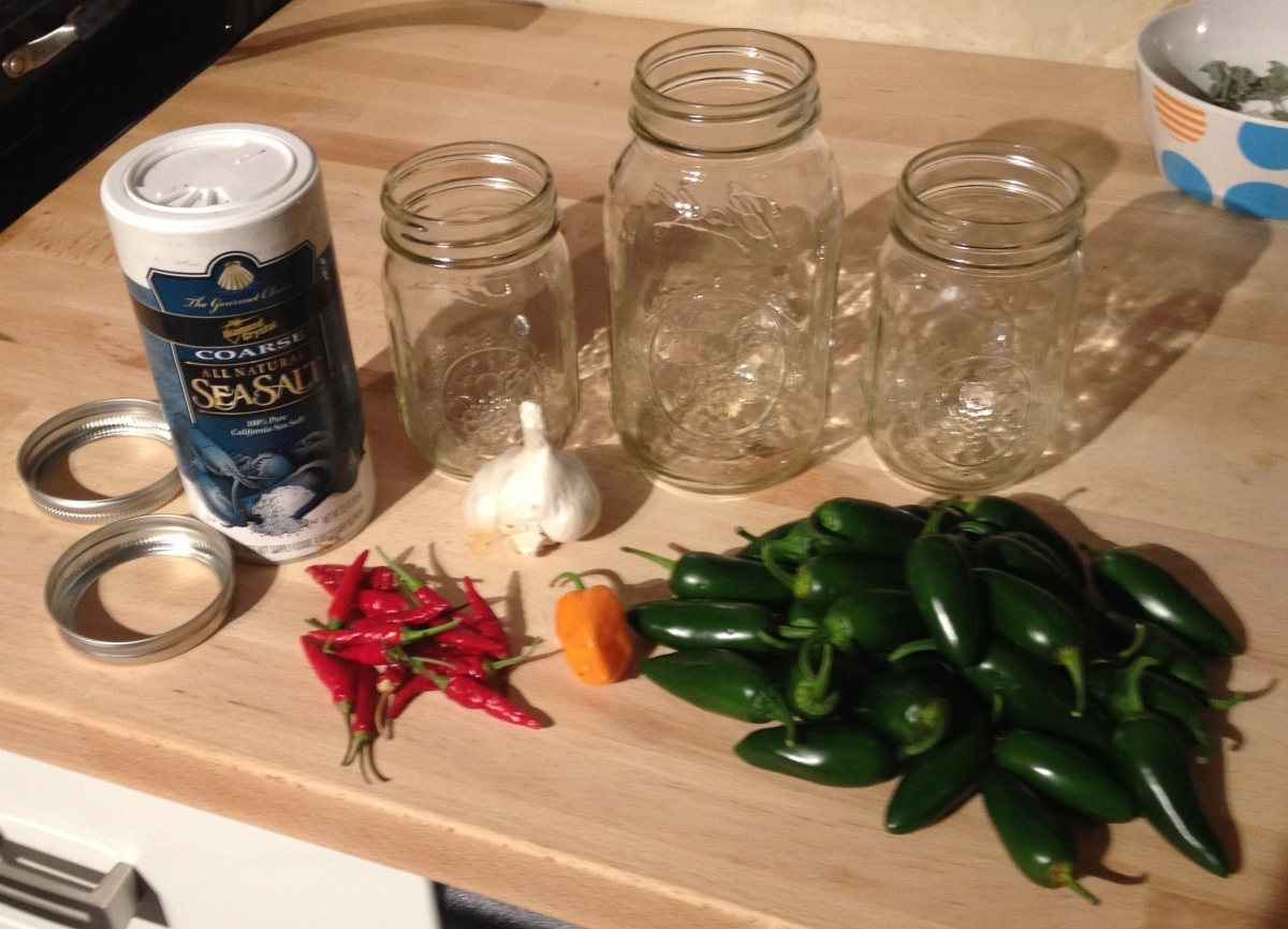 Food Fermentation 1 Fermented Hot Sauces A Ph D In