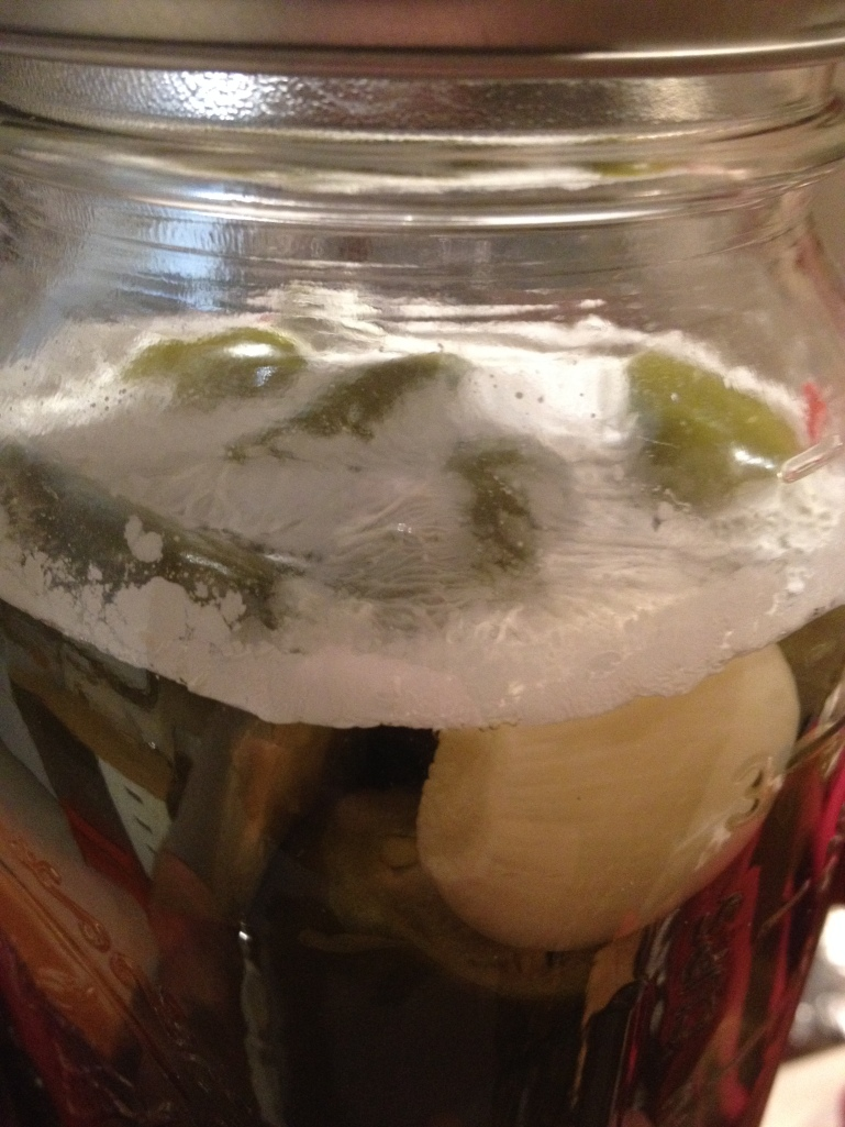 September 23rd, 2014. Pellicle forms on the top of the peppers.