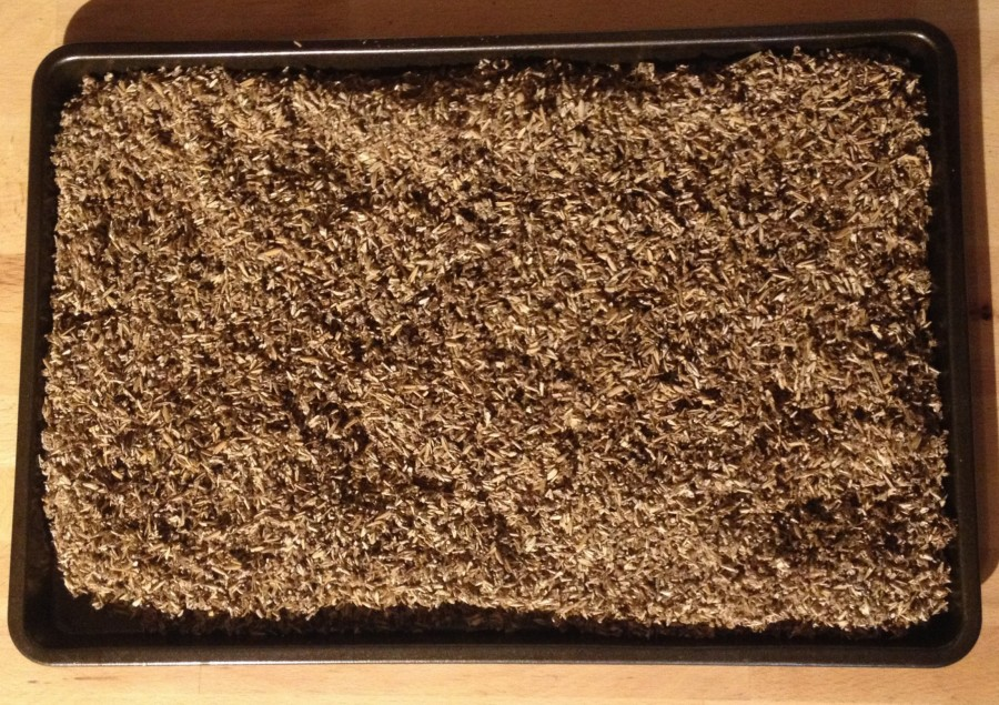 Dried grain in cooking sheet