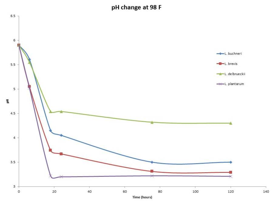 pH changes over time at 98 F
